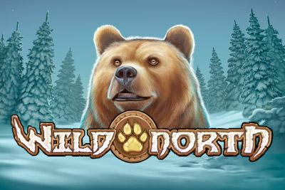 Wild North – Slot Pelaa Online